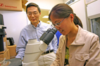 Huimin Zhao, left, a professor of chemical and biomedical engineering, and graduate student Zhilei Chen have changed the function of a protein using a co-evolution approach.