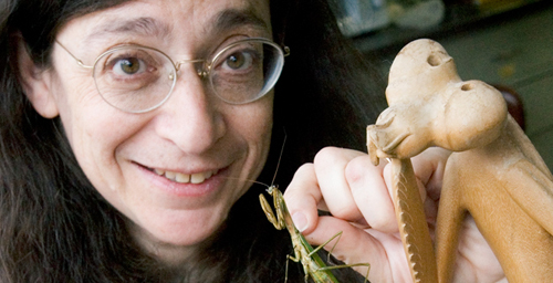 University of Illinois entomologist May Berenbaum is the recipient of the National Medal of Science, the nation's highest honor for achievement and leadership in advancing the fields of science and technology.  Click photo to enlarge