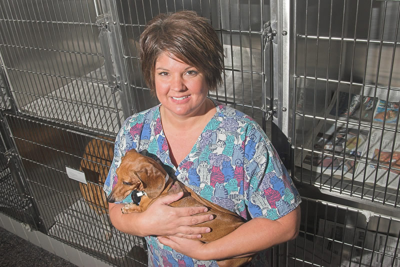Deneen Cordell is a clinical coordinator of the veterinary interdisciplinary pain service at the Small Animal Clinic in the College of Veterinary Medicine.