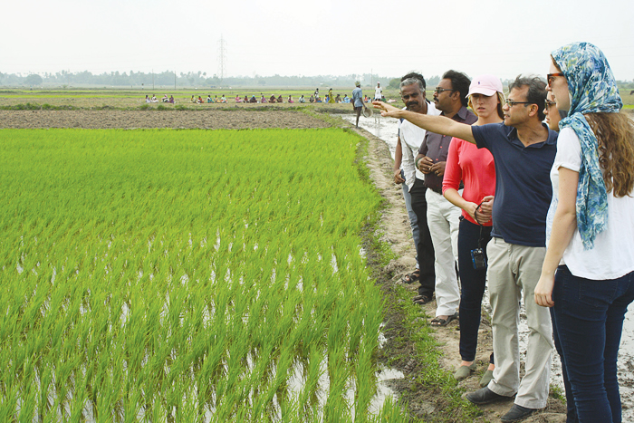 On a 10-day excursion to India, students meet and tour the facilities of small-scale farmers, food distributors, market vendors, restaurant managers, and storage facility operators.