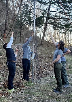 Several researchers put up poles to hang a mist net near a mine entrance.