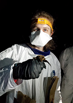 Researcher in full protective gear holds a  brown bat in her gloved hand.