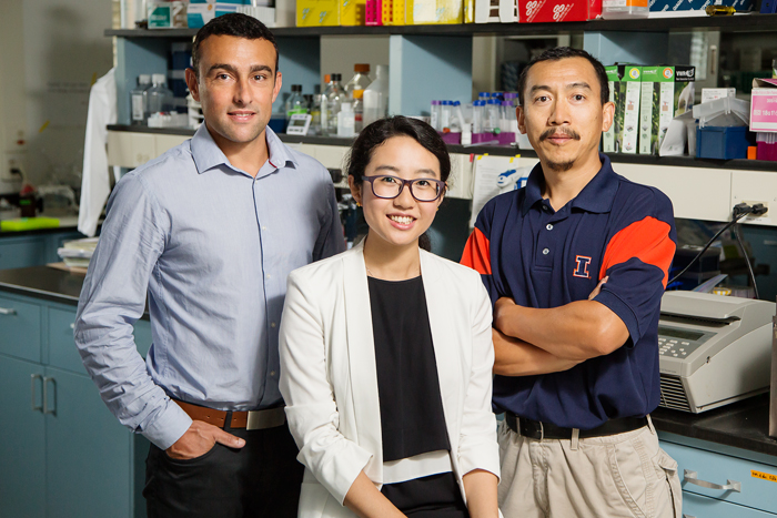 photo of researchers Stephane Lezmi, Huan Wang and Yuan-Xiang Pan New research by, from left, nutritional sciences professor Stphane Lezmi, doctoral researcher Huan Wang and Yuan-Xiang Pan, a professor of nutritional sciences and of food science, found the long-sought link between maternal protein deficiency during pregnancy and problems such as stunted growth and metabolic diseases in offspring.