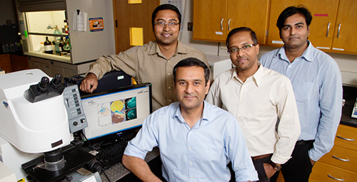 University of Illinois postdoctoral researcher Prabuddha Mukherjee, left, bioengineering professors Rohit Bhargava and Dipanjan Pan, and postdoctoral researcher Santosh Misra report the development of a new class of carbon nanoparticles for biomedical use.
