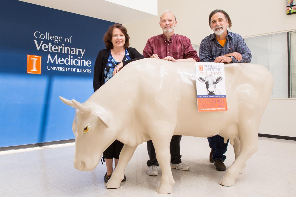 3-D cow app will help veterinary students learn anatomy   Illinois