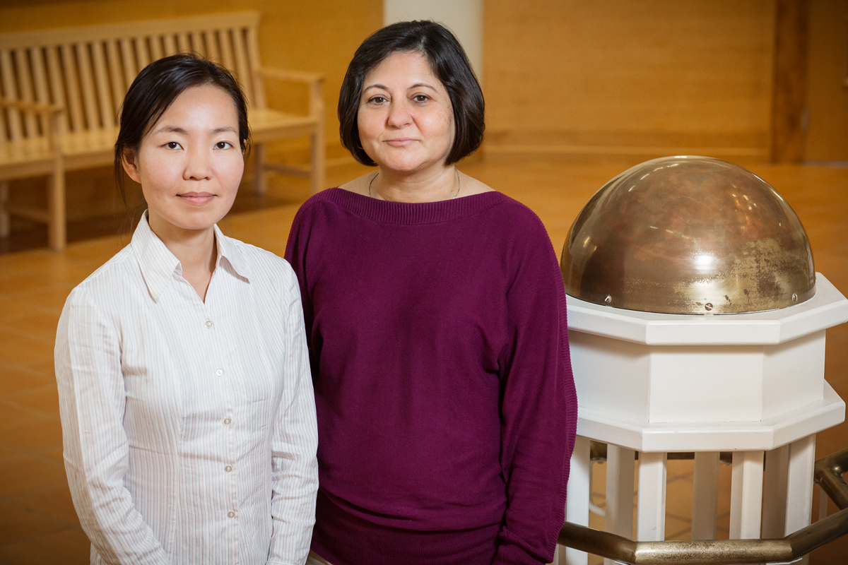 A photo of Madhu Khanna, right, a professor of agricultural and consumer economics at Illinois, and Weiwei Wang, a postdoctoral research associate at Illinois.