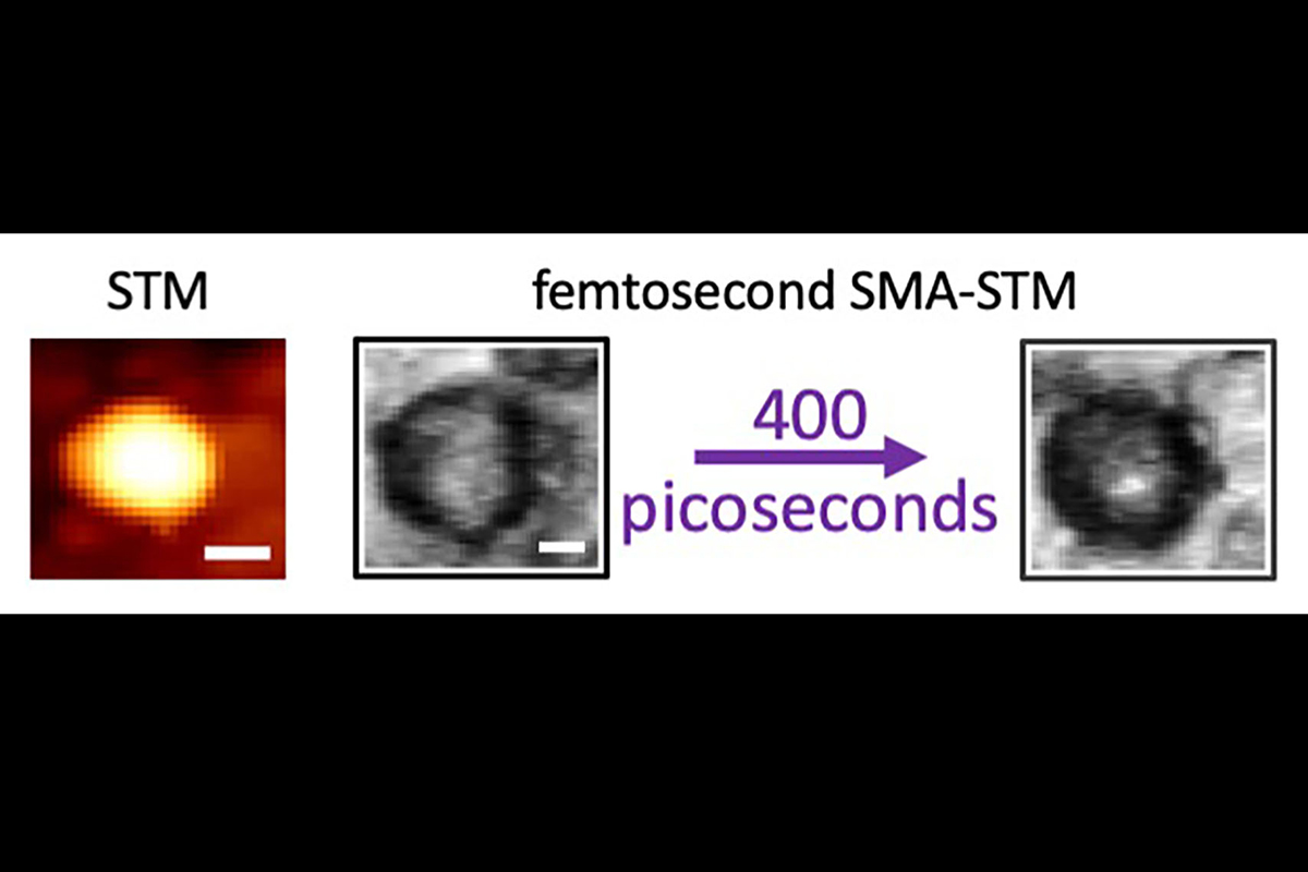 A graphic showing an ordinary scanning tunneling microscopy image a featureless carbon dot and a time-resolved single molecule absorption STM. The graphic reveals that laser excitation is initially spread over the whole carbon dot, but within a few picoseconds the excitation migrates to a highly localized area on the surface.