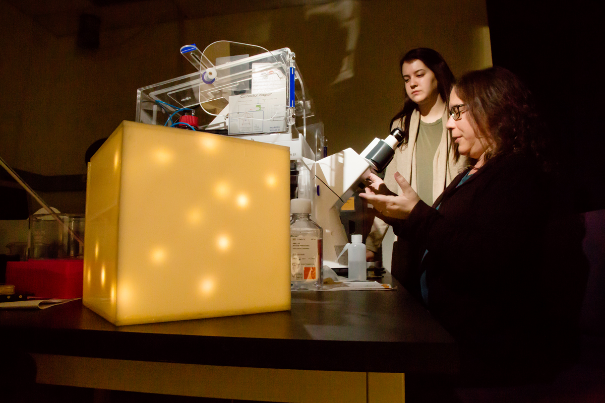 Chemistry professor Catherine Murphy, seated at the microscope, explains the work of her research team to Peggy Flavin, an environmental design student.