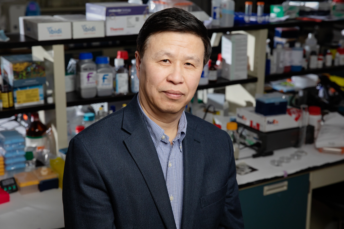 Professor Ning Wang sits in his lab.