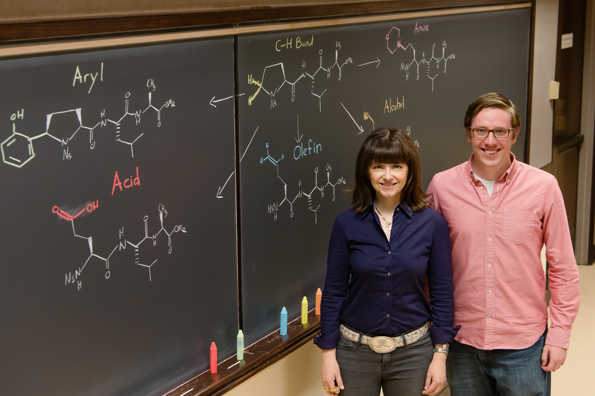 Chemists led by University of Illinois professor M. Christina White and graduate student Thomas Osberger found that two small-molecule iron catalysts can oxidize chiral amino acids and peptides to an array of unnatural forms, giving researchers more options for developing drug candidates.