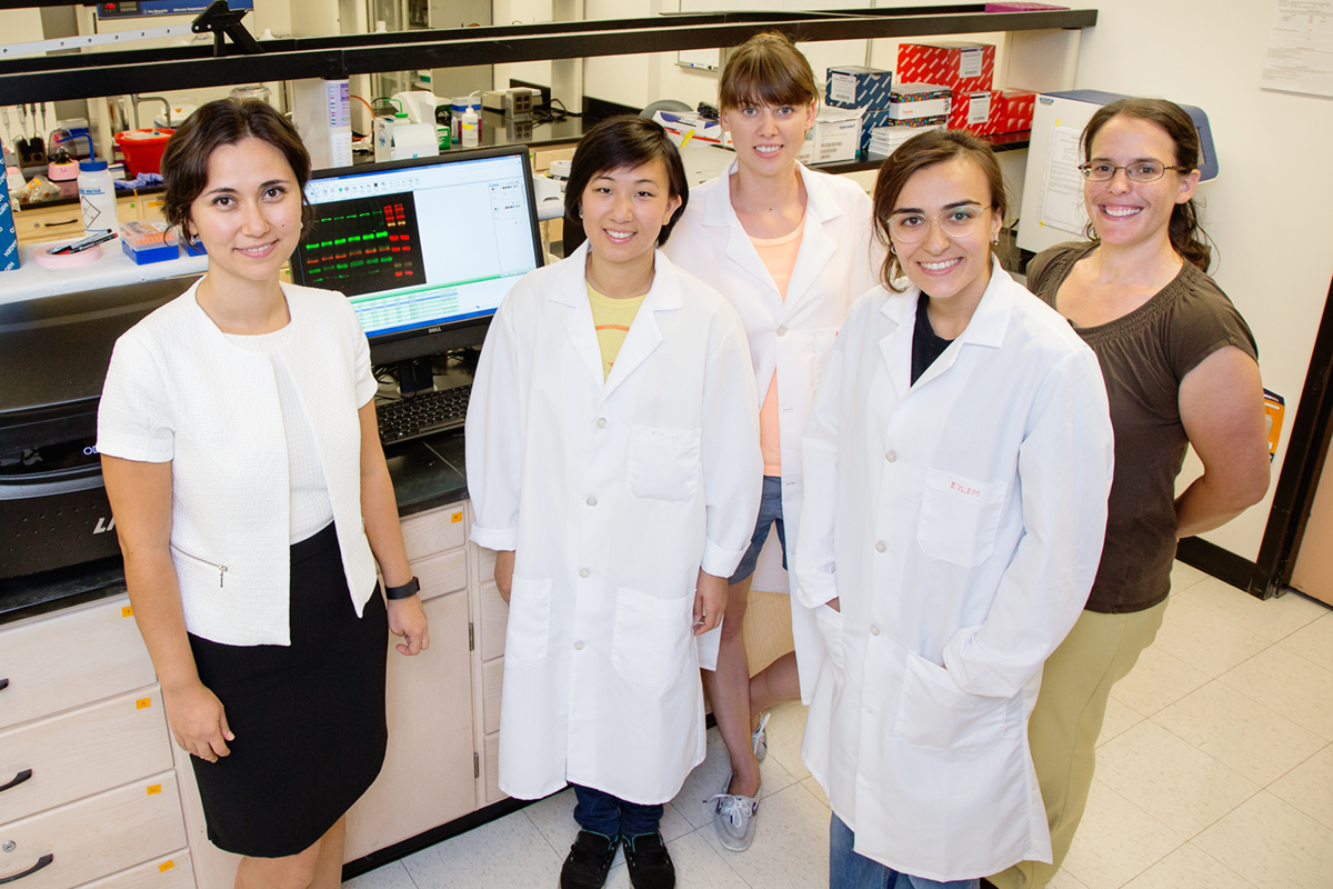 In breakthrough research on breast cancer, a team at the University of Illinois discovered that higher levels of the nuclear transport gene XPO1 indicate when a patient is likely to be resistant to the popular drug tamoxifen. The team, from left, food science and human nutrition professor Zeynep Madak-Erdogan; graduate students Karen Chen, Kinga Wrobel and Eylem Kulkoyluoglu; and epidemiology professor Rebecca Smith.