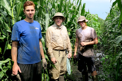Joseph Spencer, center, with undergraduate student Joe Griffin, left, and U. of I. alumnus Brody Dunn, right, work to clear western corn rootworm beetle traps from a muddy cornfield.