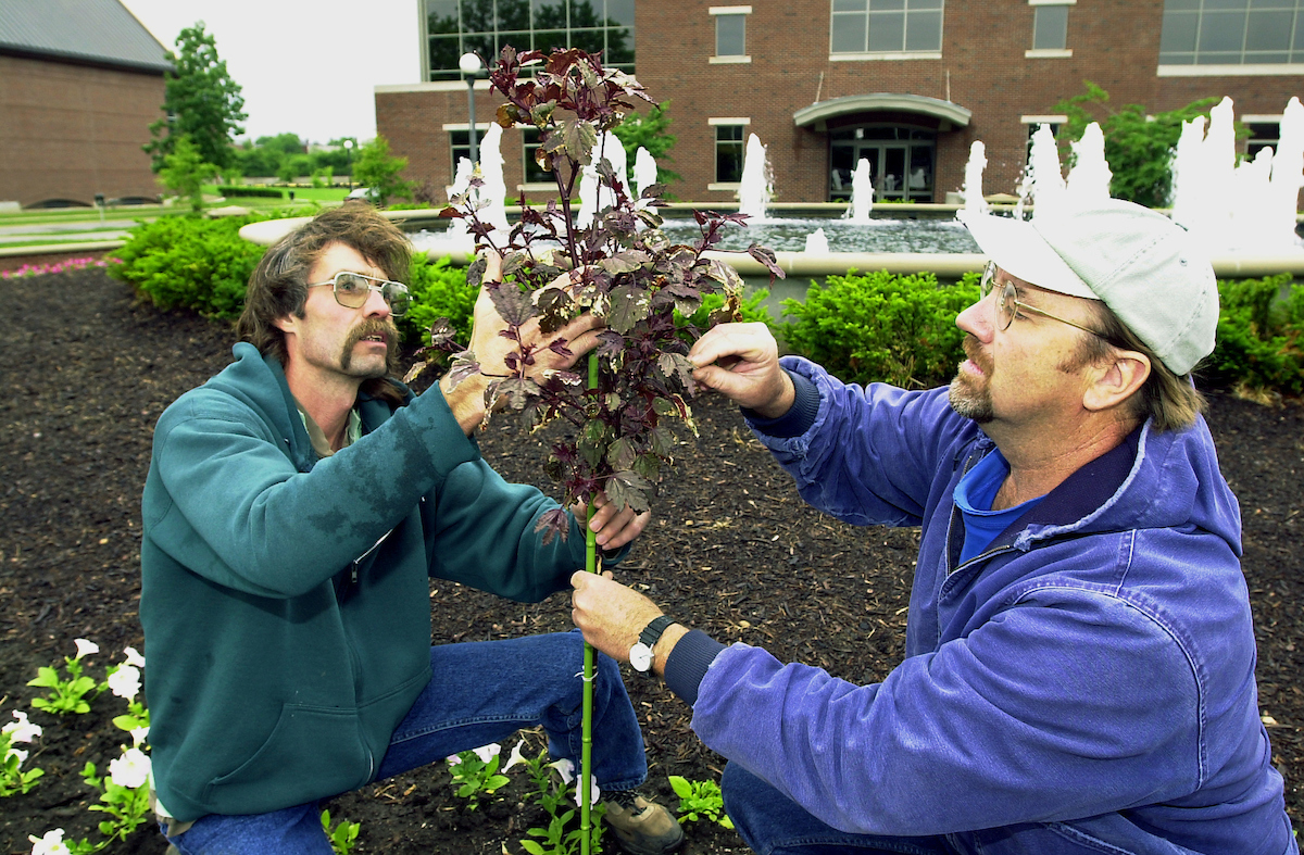As UI's two-man 'flower crew' this summer, Al Rasmussen (left) and chuck Burdick are responsible for the flowers on campus. At the time of the interview they were in the midst of planting..