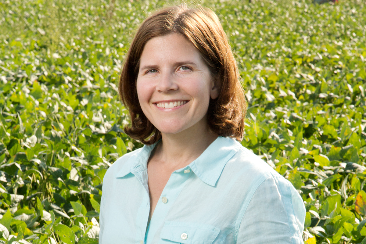 Plant biology professor Lisa Ainsworth is one of eight Illinois faculty members on the Clarivate Analytics / Thomson Reuters Highly Cited Researchers list, 2016.