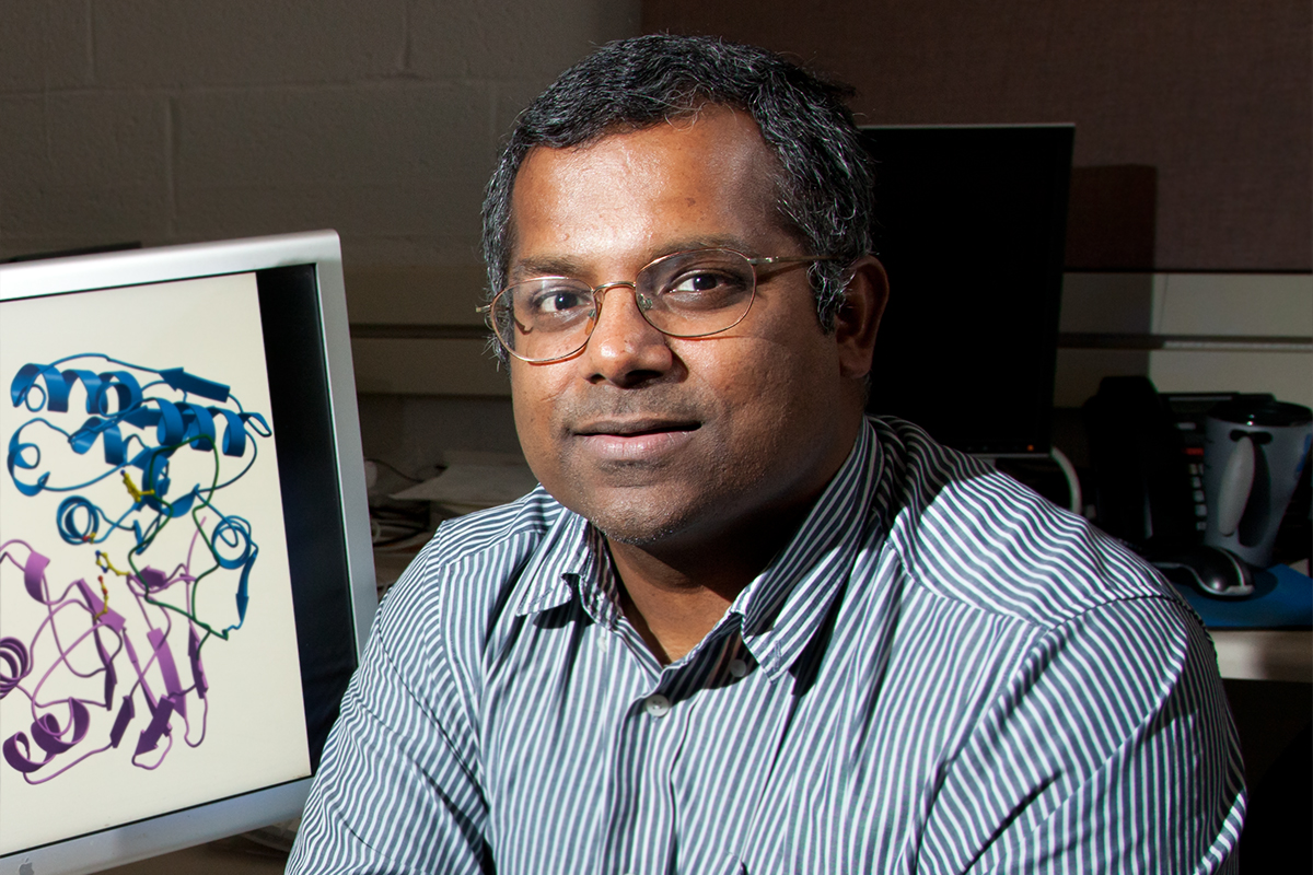 Illinois biochemistry professor Satish Nair and his colleagues found a way to use a microbial enzyme to efficiently transform proteins by adding lipid (fat) molecules to them.