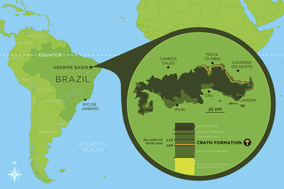 The fossil was uncovered in the Araripe Basin, in northeast Brazil, in a limestone layer called the Crato Formation.