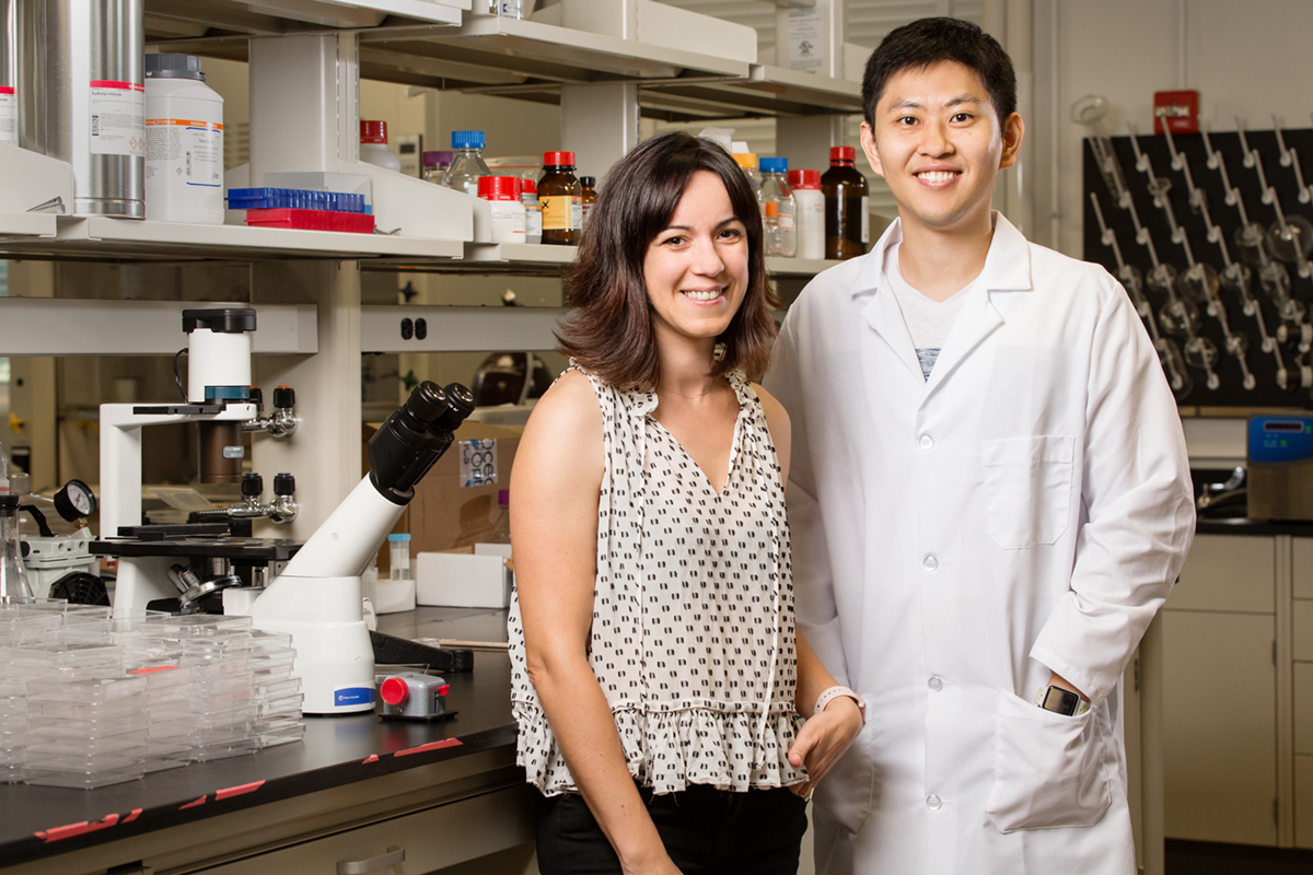 University of Illinois engineering professor Cecilia Leal, left, and graduate student Hojun Kim have developed a large, crystalline lipid structure that can support much larger proteins and molecules than before.