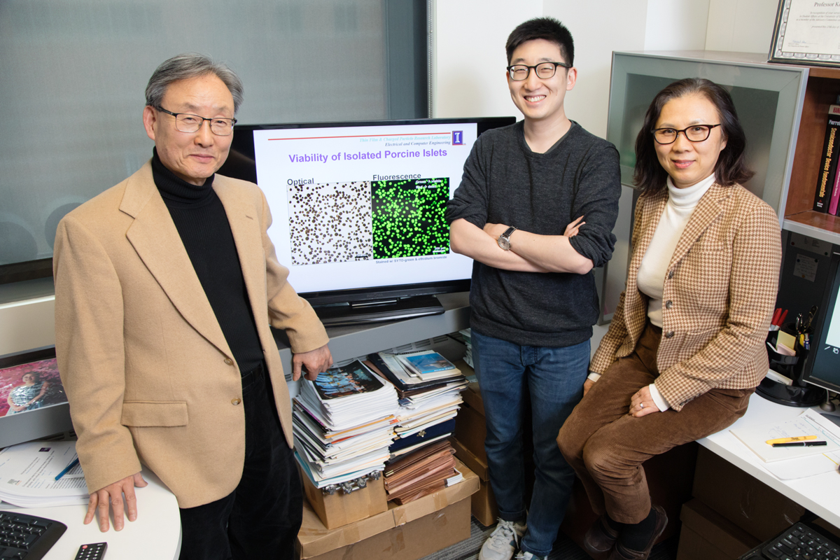 "Illinois professor Kyekyoon ""Kevin"" Kim, graduate student Benjamin Lew and research scientist Hyungsoo Choi developed a method to make it easier to transplant pancreatic islet cells from pigs to treat type I diabetes."
