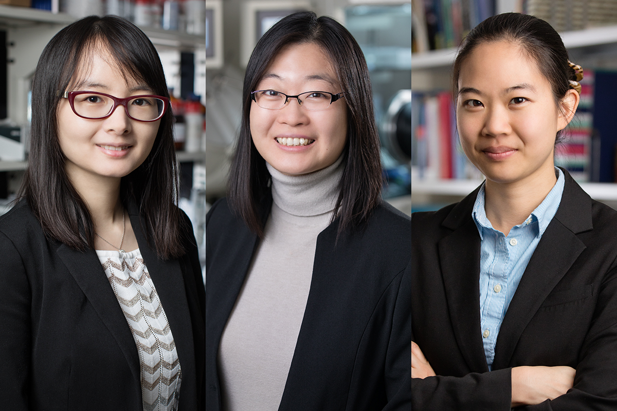 Three U. of I. professors are recipients of Alfred P. Sloan Research Fellowships this year.