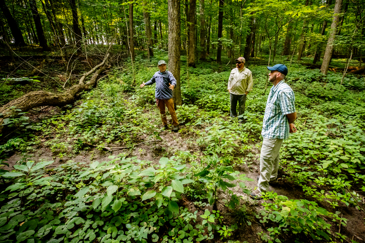 Three men stand in the woods near a depressed track and a fallen tree.
