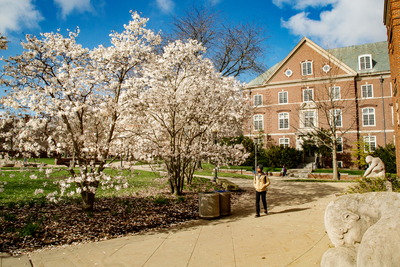 Uiuc Calendar 2022.Illinois Announces Changes To Spring Academic Calendar Illinois