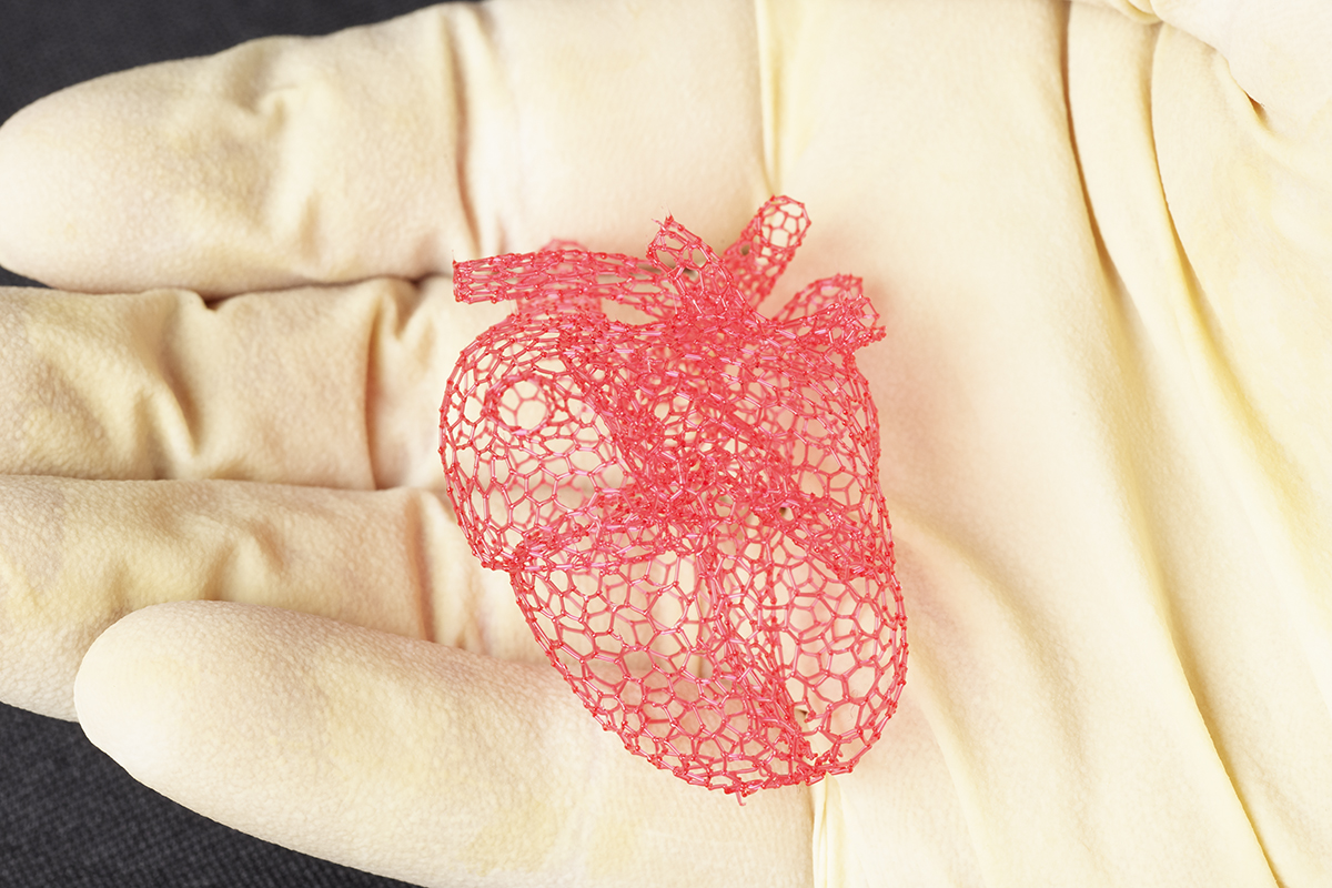 Freeform printing allows the researchers to make intricate structures, such as this model of a heart, that could not be made with traditional layer-by-layer 3-D printing. The structures could be used as scaffolds for tissue engineering or device manufacturing.