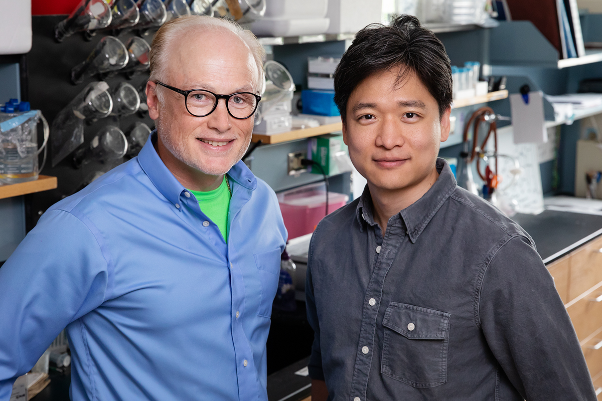 Microbiology professor Steven Blanke, graduate student Ik-Jung Kim and their colleagues discovered how a disease-causing bacterium, Helicobacter pylori, undermines the body's immune defenses.