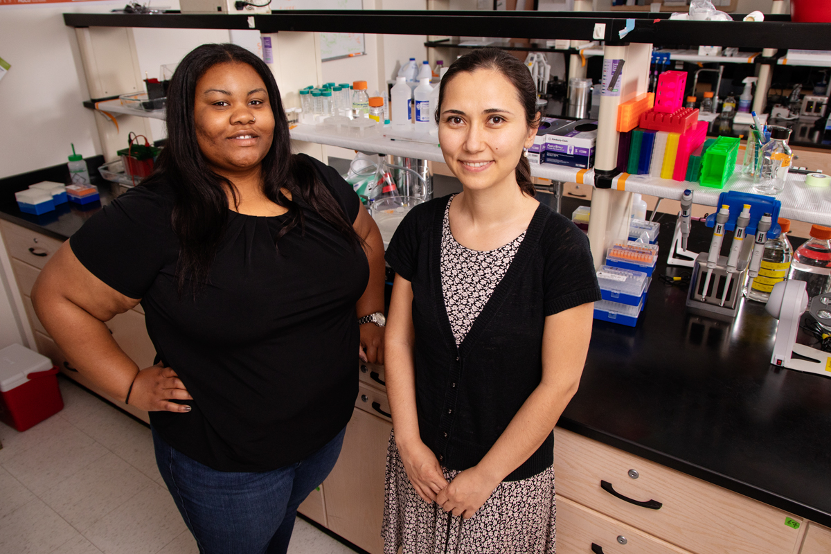 Racial disparities in breast cancer diagnosis and survival rates may have more to do with womens living environments than their races, suggests a new meta-analysis of recent research on the topic by, from left, graduate student Brandi Patrice Smith and professor Zeynep Madak-Erdogan, both in the department of food science and human nutrition at the University of Illinois.