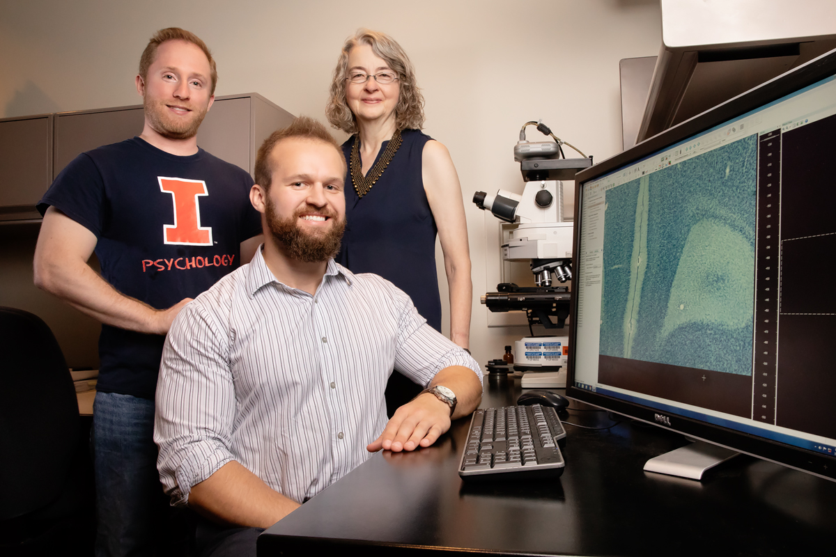 From left, Jari Willing, Daniel Kougias and Janice Juraska found that perinatal exposure to phthalates caused cognitive and neurological deficits in rats.