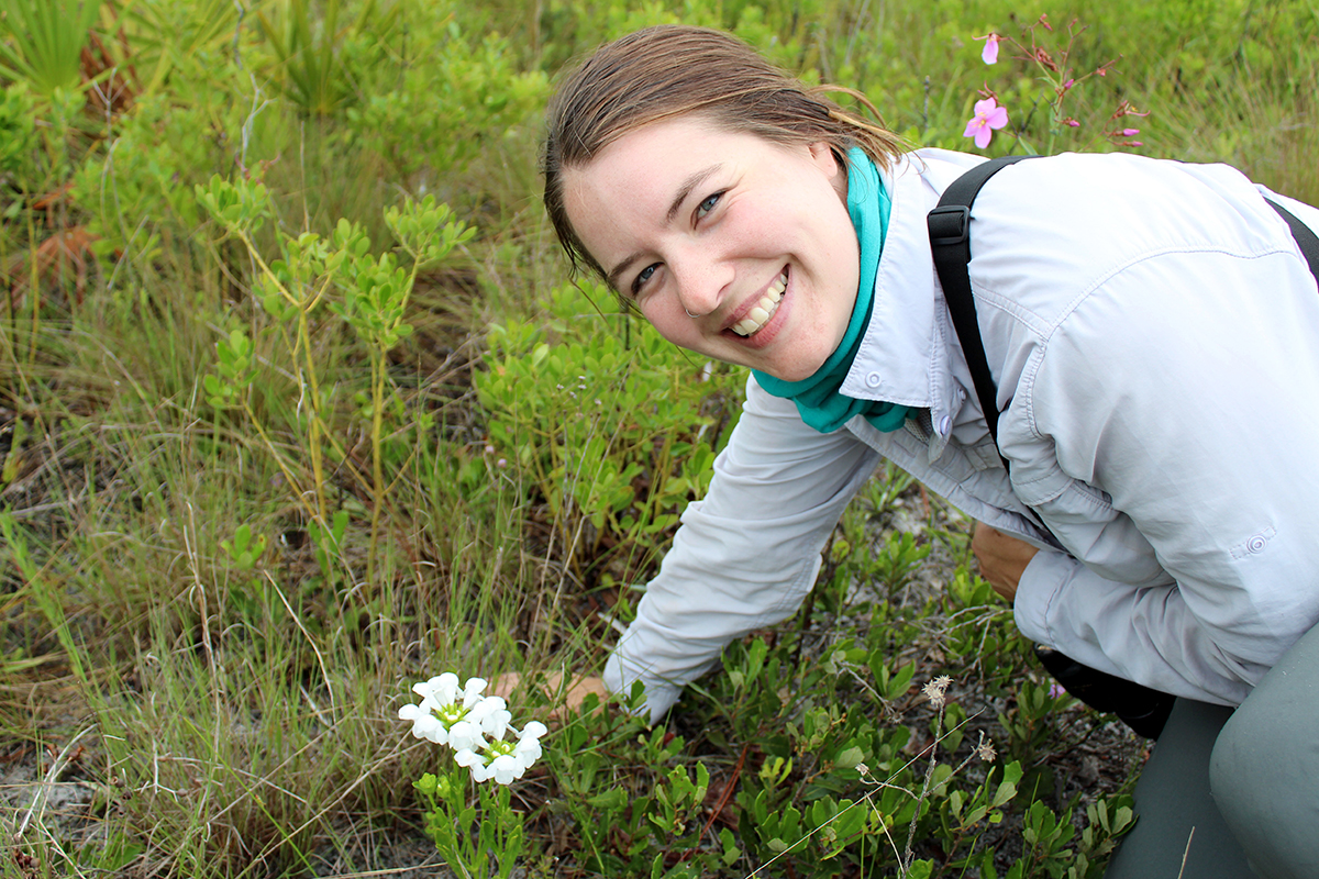 U. of I. natural resources and environmental sciences graduate student Sara Johnson and her colleagues search for an elusive white flower in the Florida Panhandle.
