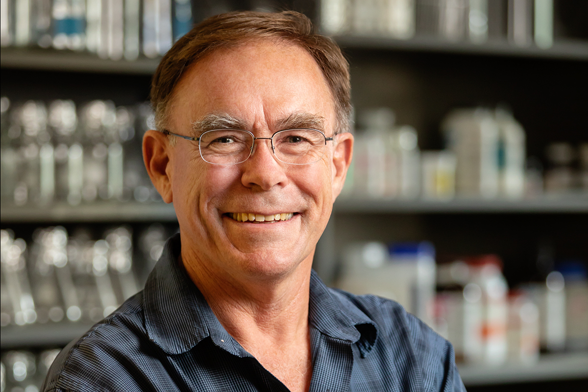 Entomology professor Hugh Robertson and colleagues have determined that odorant receptors are a defining feature of insects.