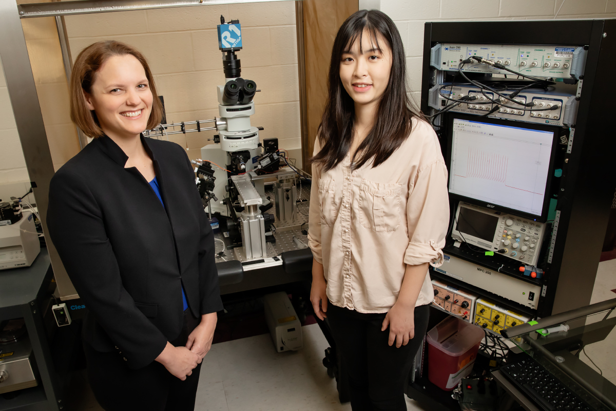 Professor Catherine Christian, left, and graduate student Jiang Li led a study that found that neurons regulating hormone release have different activity in mice with epilepsy, and that those differences fluctuate with the reproductive cycle.