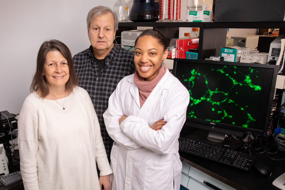 The compounds in frying oils that are repeatedly reheated to high temperatures may trigger cell proliferation and metastases in breast tumors, scientists in food science and human nutrition at the University of Illinois found in a new study of mice. The researchers, from left, food chemistry professor Nicki J. Engeseth, food science professor William G. Helferich and graduate student Ashley Oyirifi.