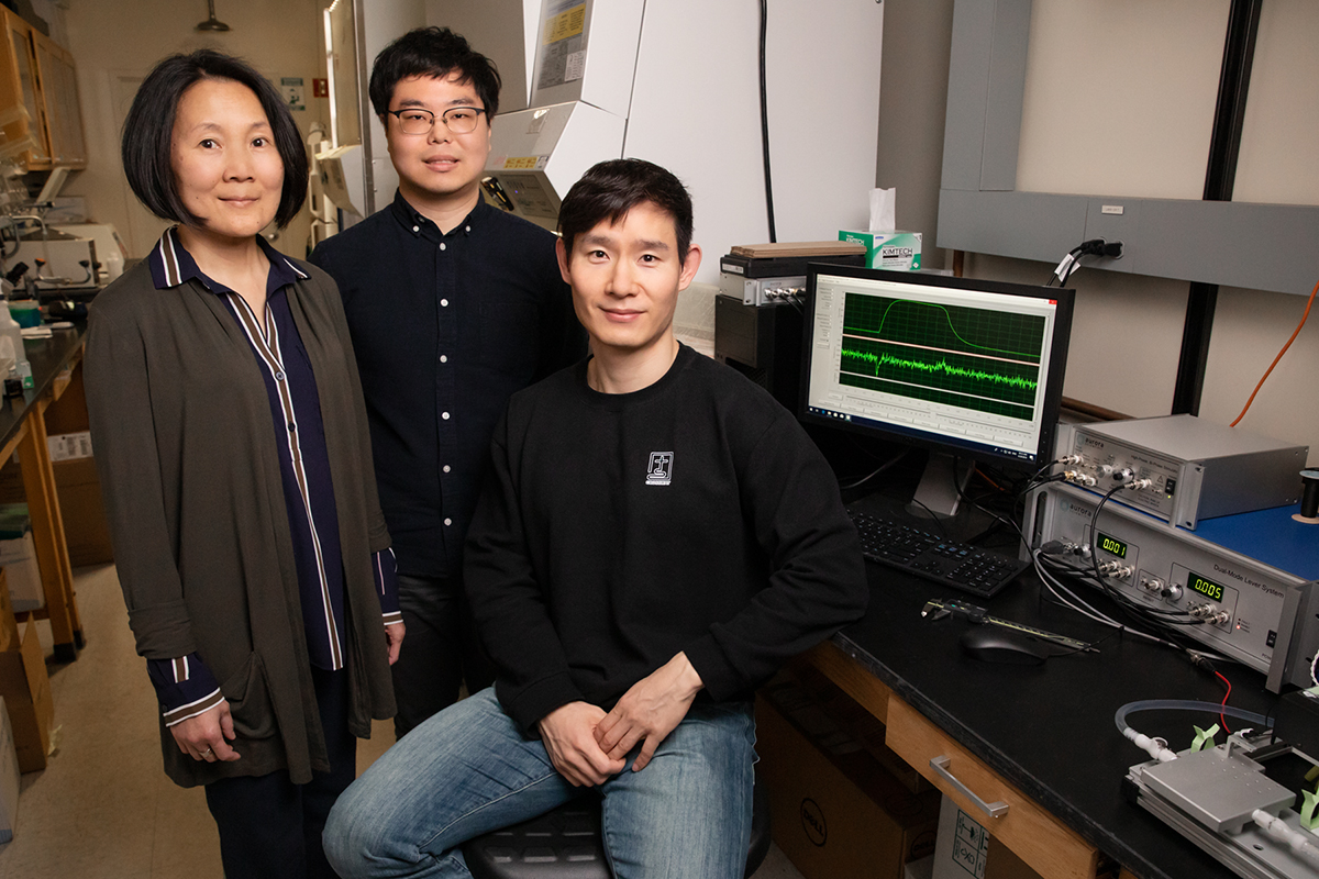 From left, U. of I. cell and developmental biology professor Jie Chen and graduate students Kook Son and Jae-Sung You discovered a new role for LRS in muscle repair. The study was conducted in mice.