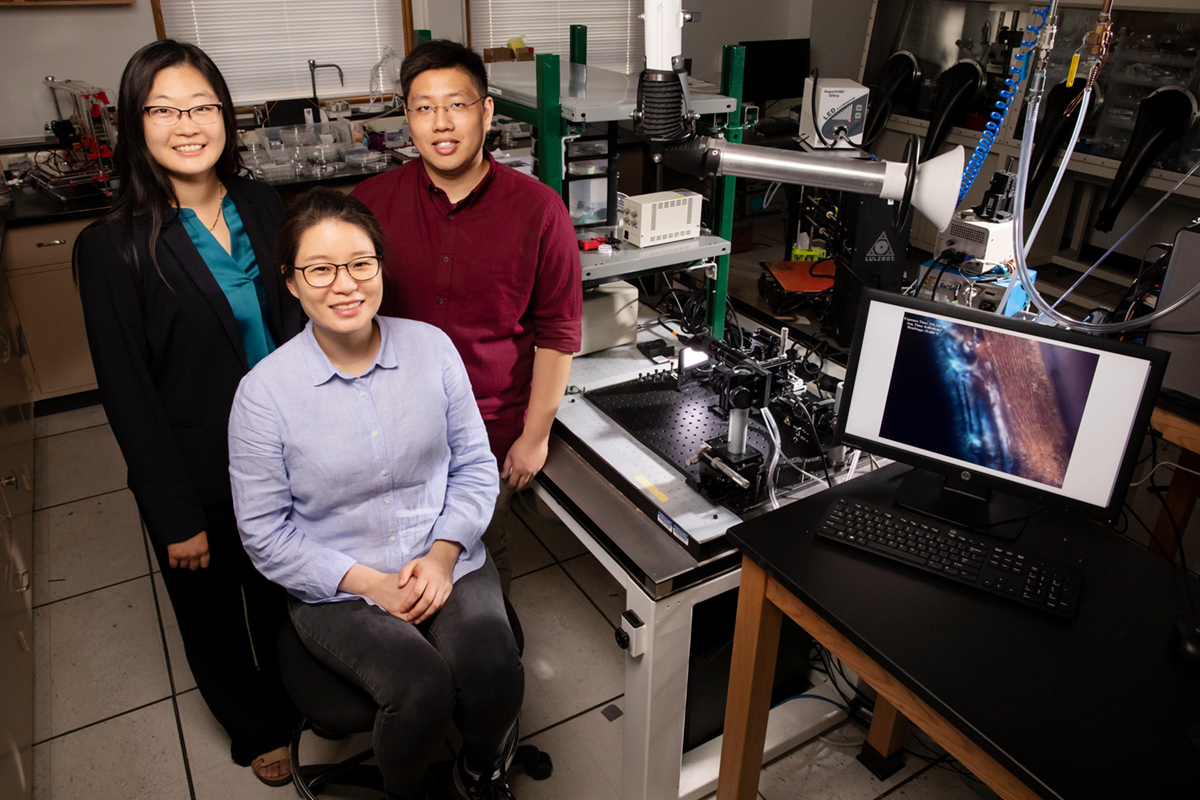 Professor Ying Diao, left, postdoctoral researcher Kyung Sun Park, seated, and graduate student Justin Kwok have found that twisted polymers can be flattened via the printing process to make them better at conducting electricity.