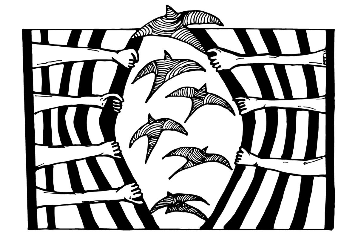 Monica Trinidad drawing