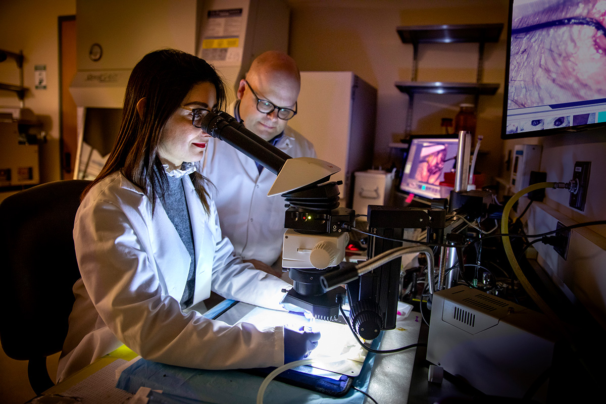 llinois researchers used a suite of imaging methods to create the first holistic picture of peripheral artery disease recovery. Pictured: postdoctoral student Jamila Hedhli and professor Wawrzyniec Dobrucki.