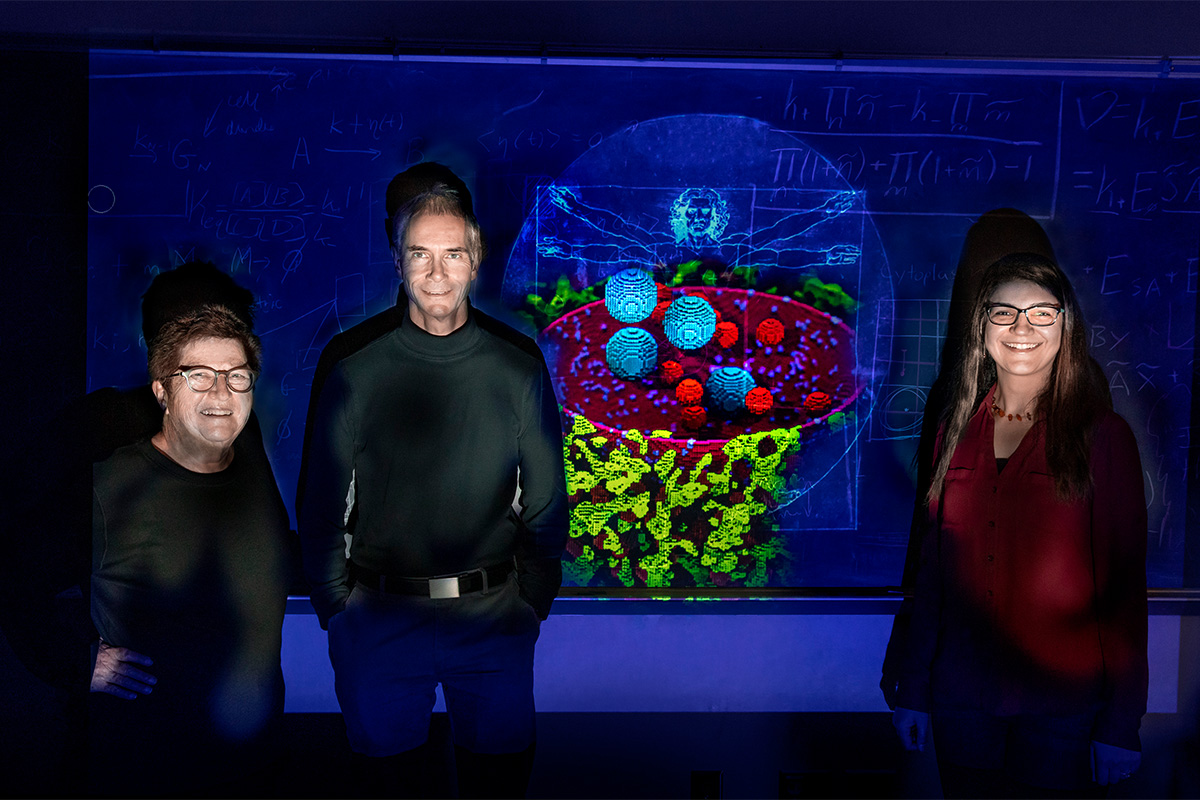 Chemistry professors Zaida Luthey-Schulten, left, Martin Gruebele and research scientist Zhaleh Ghaemi have developed the most complete computation model of a human cell to date.