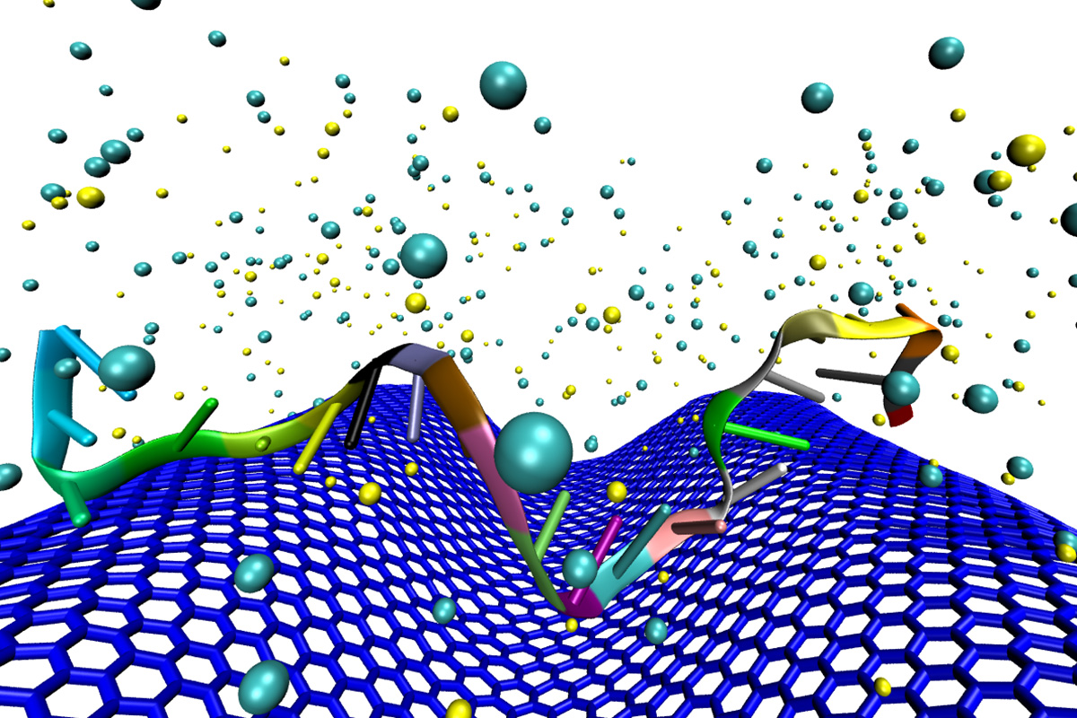 In this computer simulation, DNA in a serum sample interacts with a crumpled graphene surface.